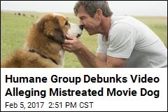 Humane Group Debunks Video Alleging Mistreated Movie Dog