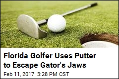 Florida Golfer Uses Putter to Escape Gator's Jaws
