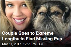 Couple Puts Wedding on Hold to Search for Missing Dog