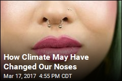 Study Finds Climate May Have Shaped Our Noses