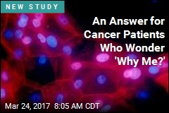An Answer for Cancer Patients Who Wonder 'Why Me?'