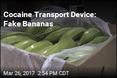 Cocaine Transport Device: Fake Bananas