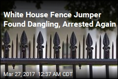 Woman Arrested for 2nd Attempt to Scale White House Fence