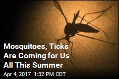 Mosquitoes, Ticks Are Coming for Us All This Summer