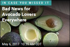 Bad News for Avocado Lovers Everywhere