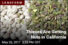 Nut Thefts Are Big Deal in California