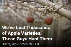 We've Lost Thousands of Apple Varieties. These Guys Hunt Them