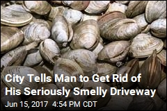 Town Declares Victory Over Neighbor's Smelly Clam Shells