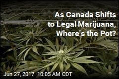As Canada Shifts to Legal Marijuana, Where's the Pot?