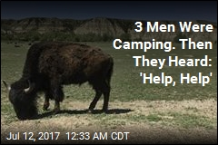 Bison Attacks Hiker in North Dakota