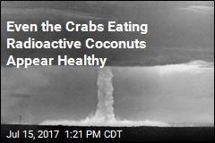 Marine Life Thriving 70 Years After Bikini Atoll Nuclear Tests