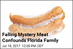 It's Apparently Raining Frozen Sausage in Florida