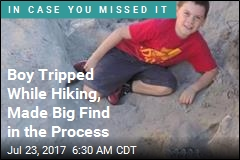 Boy Trips Over Million-Year-Old Piece of History