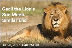Hunter Kills Son of Cecil the Lion