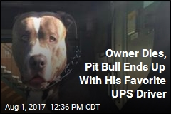 Owner Dies, Pit Bull Ends Up With His Favorite UPS Driver