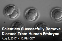 Scientists Successfully Remove Disease From Human Embryos
