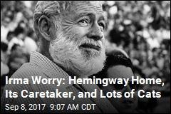 Irma Worry: Hemingway Home, Its Caretaker, and Lots of Cats