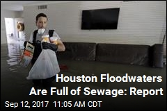 Houston Floodwaters Are Full of Sewage: Report
