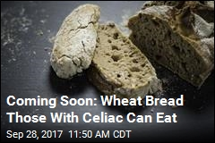 Gene Editing May Make Bread Safe for Celiacs