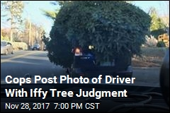 Cops: This Is How Not to Bring Home Your Tree
