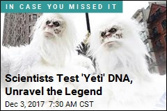 You've Probably Seen a 'Yeti'