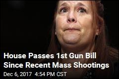 House OKs GOP Bill Expanding Gun Owner's Rights