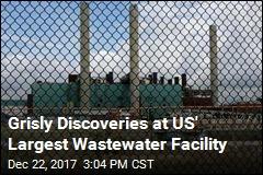Objects Found at Wastewater Facility May Be Human Organs