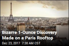 On a Paris Rooftop, a Scientific and Foodie Mystery