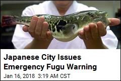 Japanese City Issues Emergency Fugu Warning