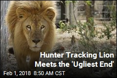 Hunter Set Out to Kill a Lion, Was Fatally Shot Himself