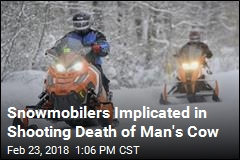 Snowmobilers Lose Trail Access After a Cow Is Shot