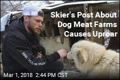 Olympic Skier's Adopted Dog Causes Stir