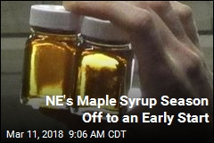 NE's Maple Syrup Season Off to an Early Start