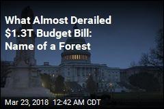 Congress OKs $1.3T Budget Bill