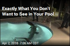 Exactly What You Don't Want to See in Your Pool