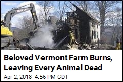 Beloved Vermont Farm Burns, Leaving Every Animal Dead