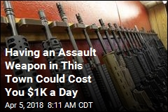 Having an Assault Weapon in This Town Could Cost You $1K a Day