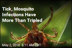 Tick, Mosquito Infections Have More Than Tripled
