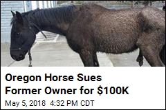 Neglected Horse Sues Former Owner for $100K