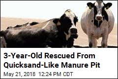 'Kind of Like Quicksand:' Boy Saved From Manure Pit