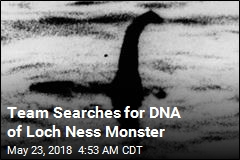 Expedition Will Search for Nessie's DNA