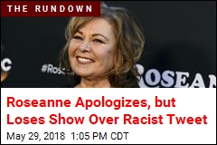 Roseanne Barr Apologizes Twice for Racial Joke