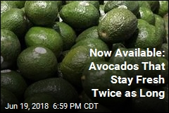 Now Available: Avocados That Stay Fresh Twice as Long
