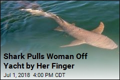 Shark Pulls Woman Into Sea by Her Finger