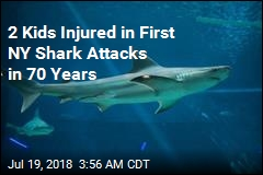2 Kids Bitten in Suspected Long Island Shark Attacks