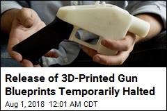 Judge Blocks Release of 3D-Printed Gun Blueprints