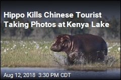 Hippo Kills Chinese Tourist Taking Photos at Kenya Lake