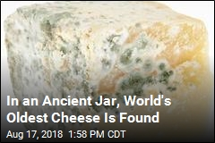Researchers Found the World's Oldest Cheese