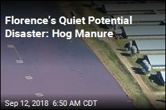 Florence's Quiet Potential Disaster: Hog Manure