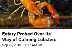 State Probes Eatery That Gave Pot to Lobsters